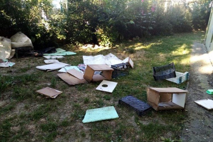 Bursa'da site bahçesindeki kedi evlerini yıkan şahıs, hayvanseverlere tepki gösterdi