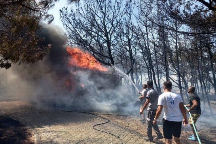Bozcaada'da korkutan orman yangını!