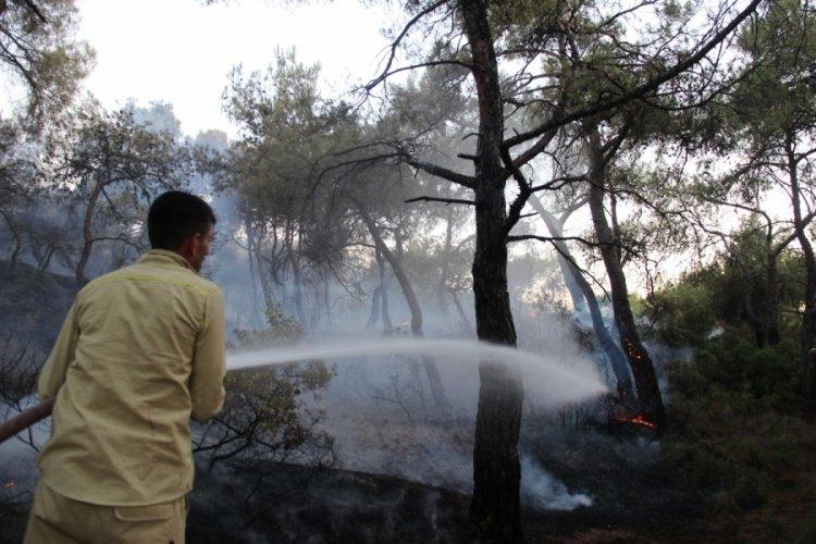 Foça'daki yangın büyük oranda kontrol altına alındı