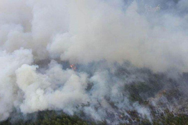 Denizli'de korkunç yangın!