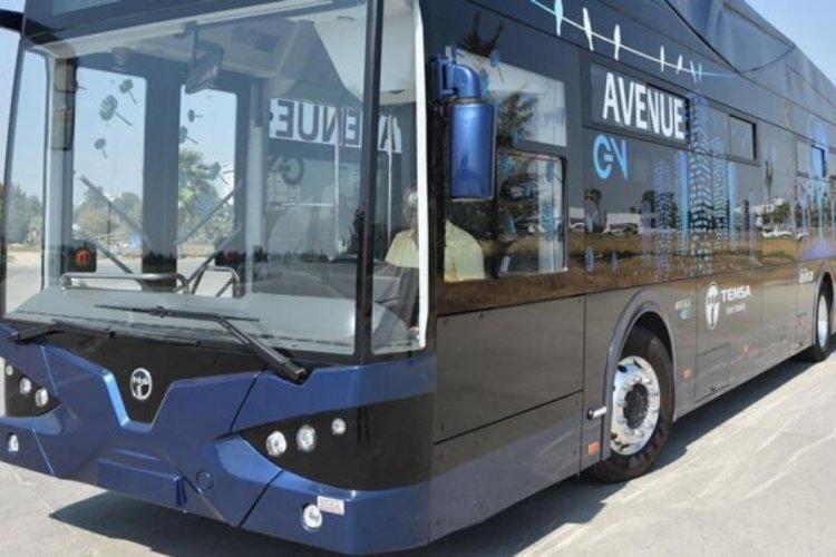 Samsun'da elektrikli otobüs heyecanı!