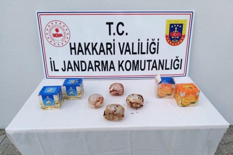 Hakkari'de kargo aracında uyuşturucu madde ele geçirildi