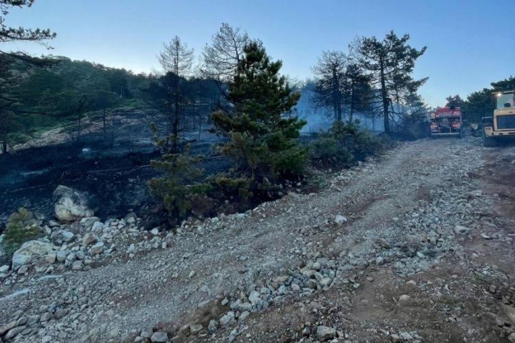 Hatay'da yangında 3 hektarlık alan zarar gördü