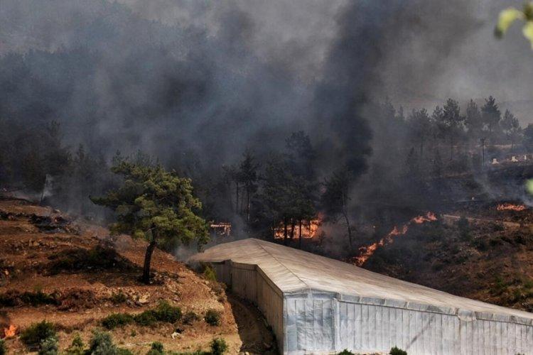Mersin ve Hatay'daki yangınlar kontrol altına alındı