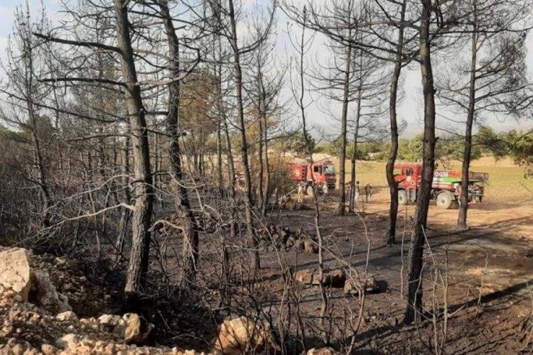 Denizli'de aynı gün içinde ikinci orman yangını