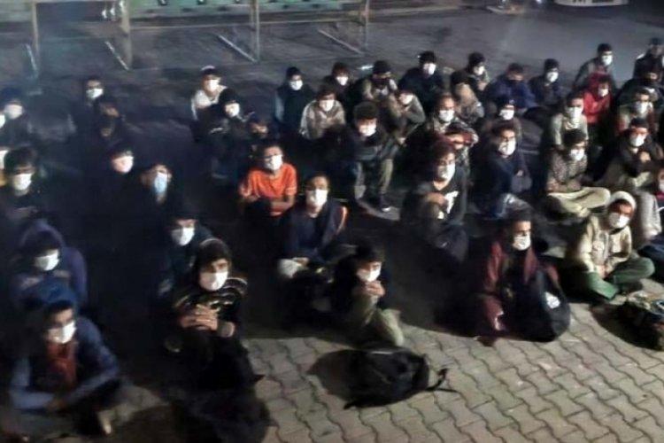 Van Erciş'te 60 düzensiz göçmen yakalandı
