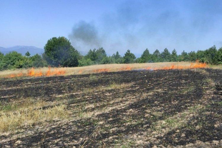Ses bombası, tarım arazisini küle çevirdi