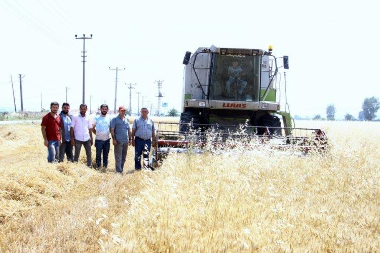 Bursa'da para kazanamayan çiftçi ekim yapmıyor