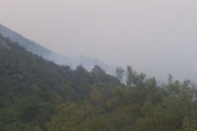 Kontrol altına alınan orman yangını yeniden alevlendi