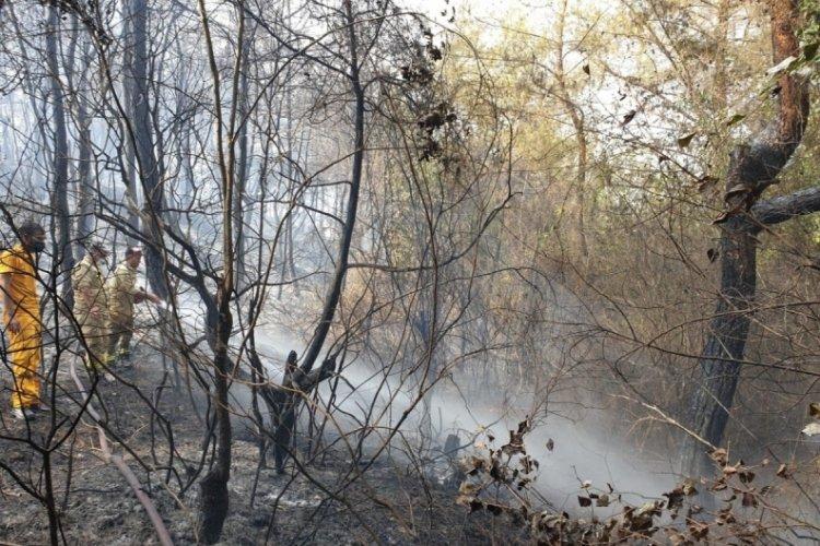 Osmaniye'deki yangın kontrol altına alındı