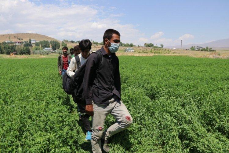 Van'da 25 kaçak göçmen yakalandı!