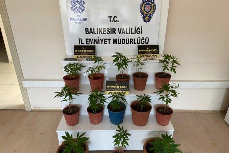 Balıkesir'de uyuşturucu operasyonu!