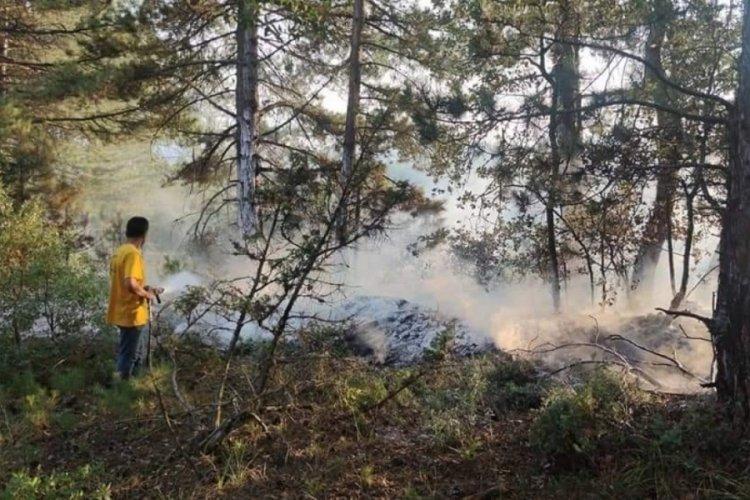 Bursa'da yıldırım orman yangınlarına sebep oldu