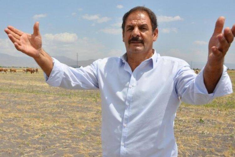 Erzurum'da 7 bin lira maaşla çoban bulamıyorlar
