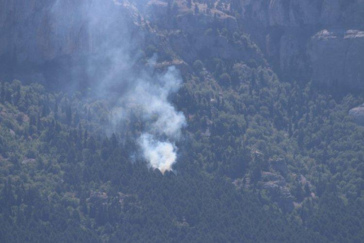 Adana Feke'de korkutan orman yangını!