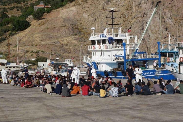 Çanakkale'de 231 kaçak göçmen yakalandı