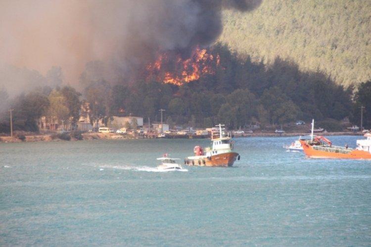 Milas ve Bodrum yangınlarında 80 hektar orman kül oldu