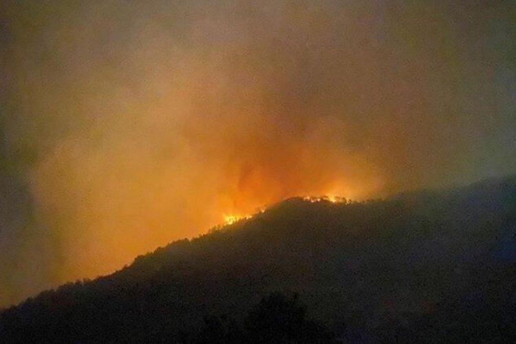 Antalya'da bir yangın daha!