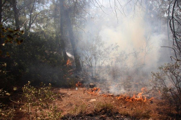 Muğla'da yangın bölgesinde risk devam ediyor