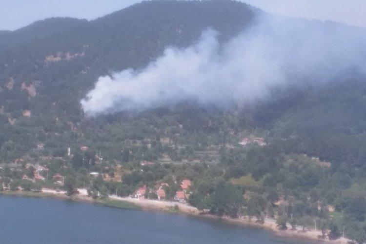 Bingöl ve Özdemiş'teki yangın kontrol altına alındı