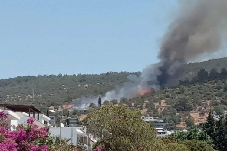 Bodrum'da yerleşim yerlerine yakın yangın! Ev ve oteller boşaltılıyor!