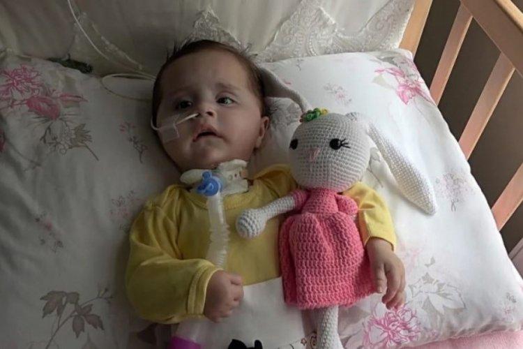 SMA hastası Zeynep için para toplanan kumbarayı çaldılar