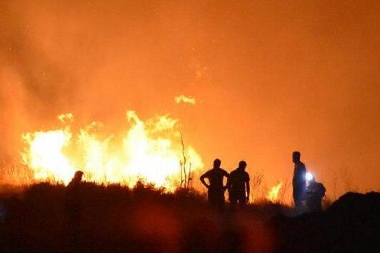 """TSB'den """"yangınların zararlarının hafifletilmesine yönelik"""" tavsiye kararı"""