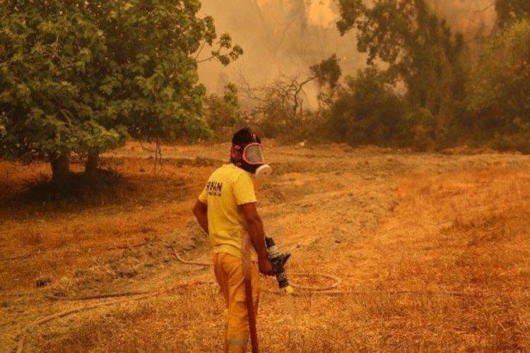 Osmaniye'deki orman yangını kontrol altında