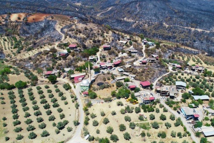 Adana'da 3 gün süren orman yangınından geriye acı hikayeler kaldı