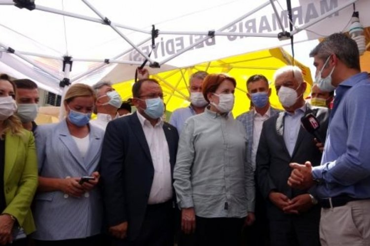 Meral Akşener: Ormanları yakanlar terör suçlusu sayılsın