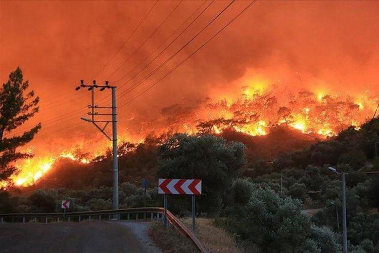 Orman yangınlarında il il son durum! Bakanlık tabloyu paylaştı