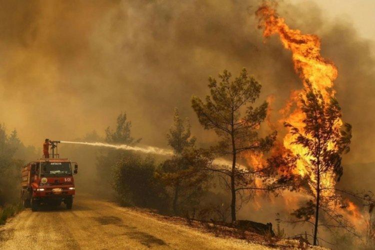 Yunanistan: Ülkemizdeki yangınlara rağmen Türkiye'ye yardım teklifimiz halen geçerli