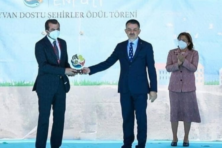 Bursa Gürsu, Enpati Hayvan Dostu Şehir oldu