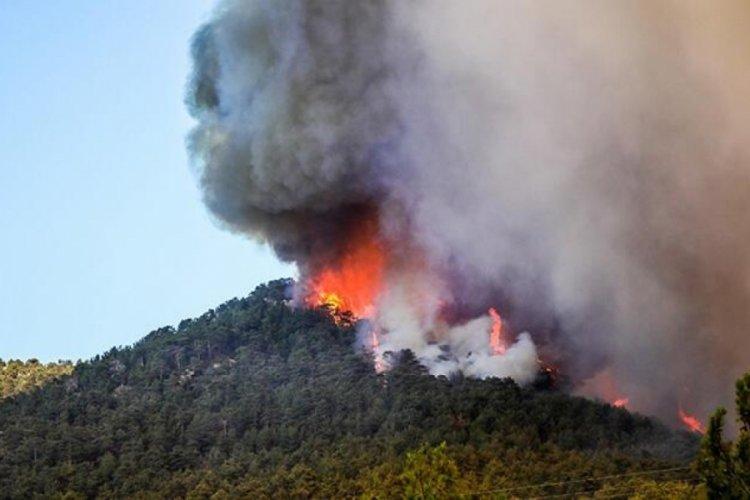 Antalya Gündoğmuş'taki yangın kontrol altına alındı