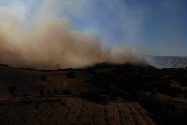 Aydın, Isparta, Denizli, Antalya ve Muğla'da orman yangınları...