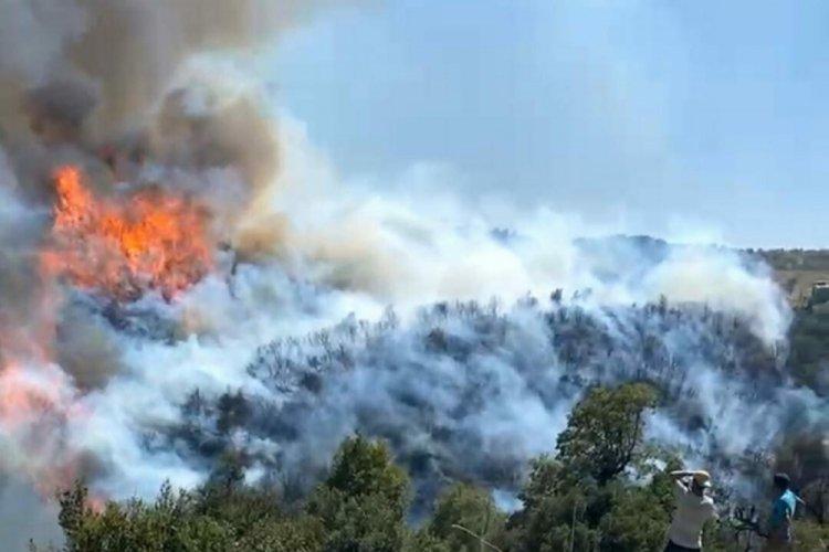 Aydın'da çıkan yangın, Muğla'ya sıçradı!
