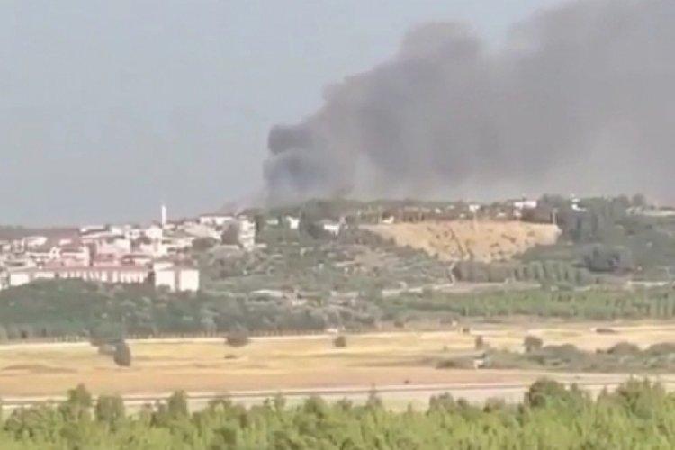 İzmir'de orman yangını: Kontrol altına alındı