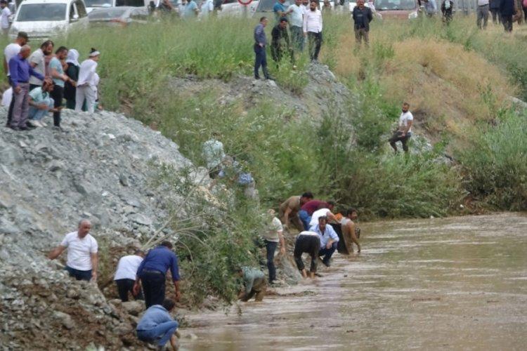 Zap Suyu'nda binlerce balık öldü, onlar ise yakalamak için birbiriyle yarıştı
