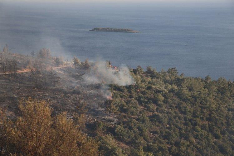 Milas ve Bodrum'daki yangınlar devam ediyor