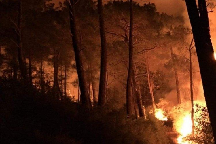 Muğla Seydikemer'de üç ayrı noktada yangın