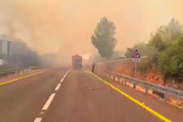 Kudüs'te büyük orman yangını