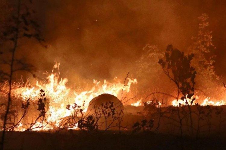 Çorum'da orman yangını meydana geldi!