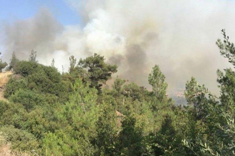Balıkesir Dursunbey'deki orman yangını kontrol altına alındı