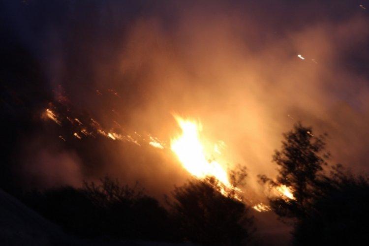 Denizli Buldan'daki yangın devam ediyor