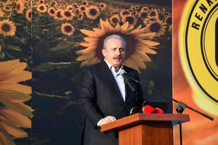 Mustafa Şentop: Yanan her ağaç, kaybettiğimiz her can yüreğimizi çok acıttı