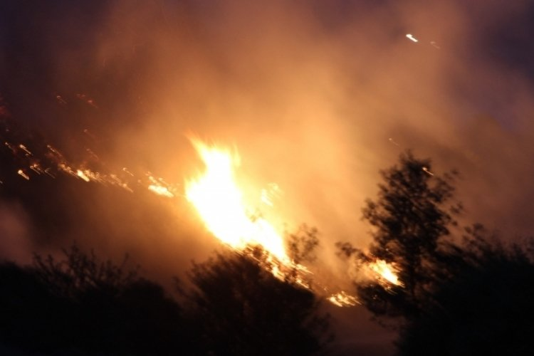 Denizli'de yangın yerleşim yerine kadar ulaştı