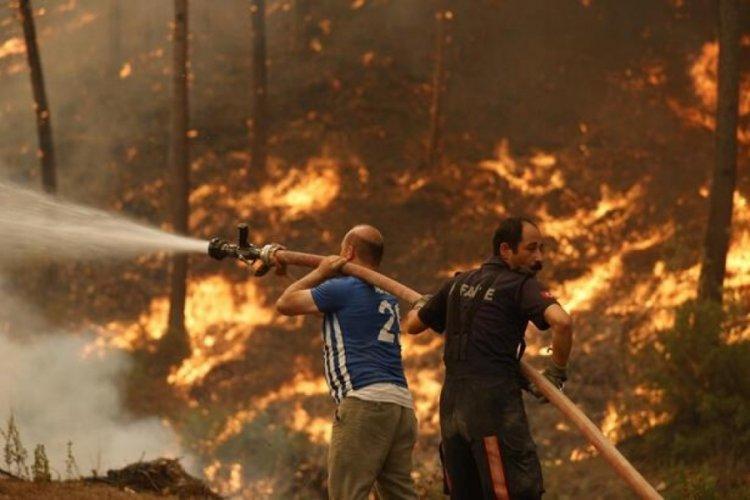 Fırsatçılar orman yangınlarını bile değerlendirdi! Bir günde yüzde 633 zam...