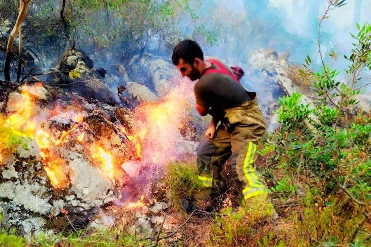 Bursa'da yangın bölgesine takviye sürüyor