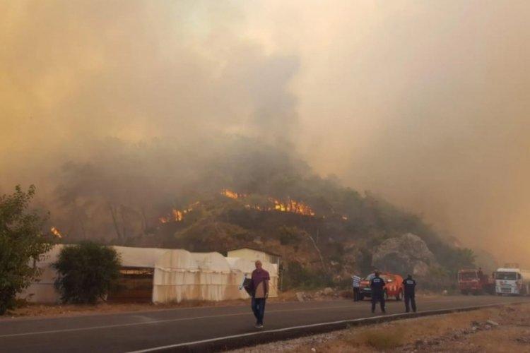 Orman yangınlarına ilişkin STK'lerden ortak açıklama