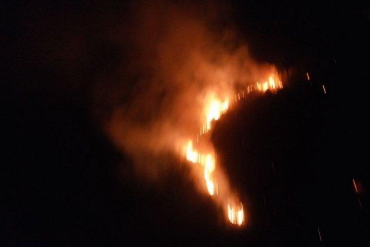 Didim'de çıkan yangın Akbük'e ulaşmadan durduruldu